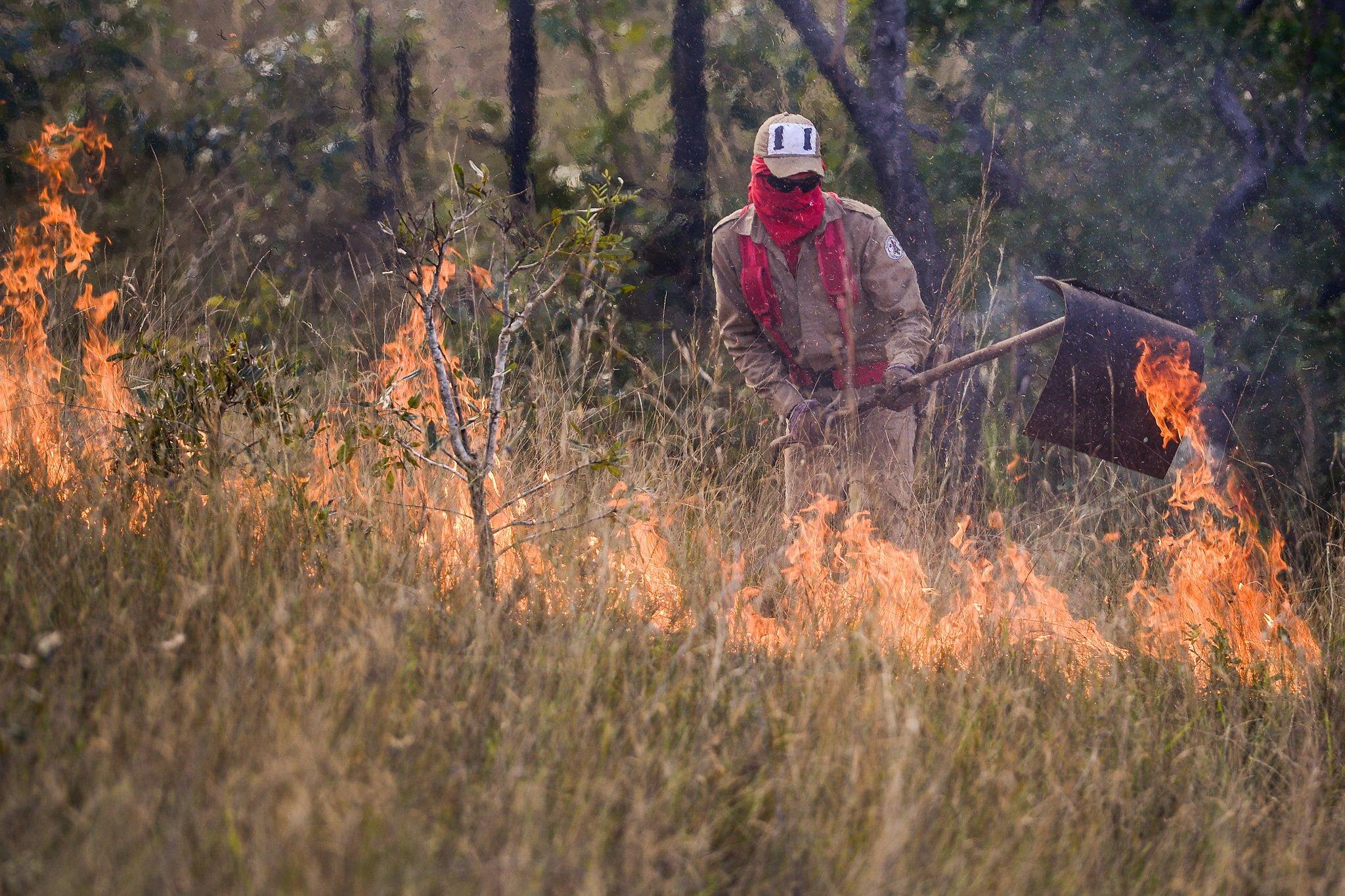 Parceria entre Prefeitura, Corpo de Bombeiros e produtores atuou em mais de 50% de ocorrências de incêndio